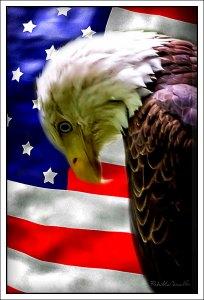 sad-eagle-flag